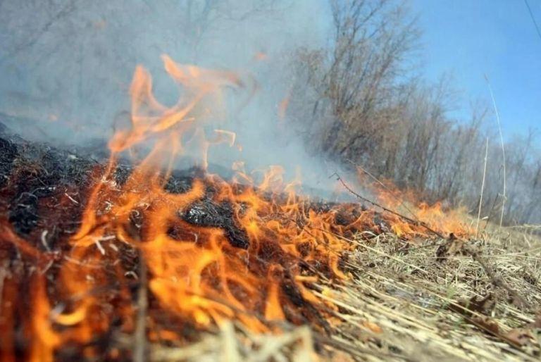 Внимание: введён особый противопожарный режим!